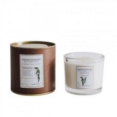 """Aromaterapinė sojų vaško žvakė """"Eukaliptas"""""""